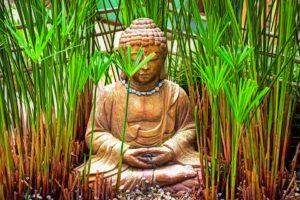 Buddha Decoratif