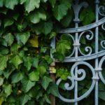 Comment construire un grillage ou une clôture de jardin ?