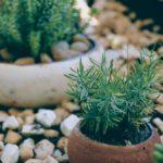Quels objets pour décorer un jardin ?
